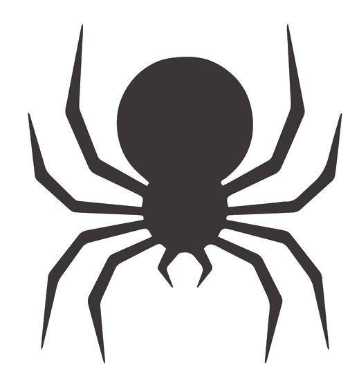 Colonie de vacances Halloween araignée Djuringa Juniors